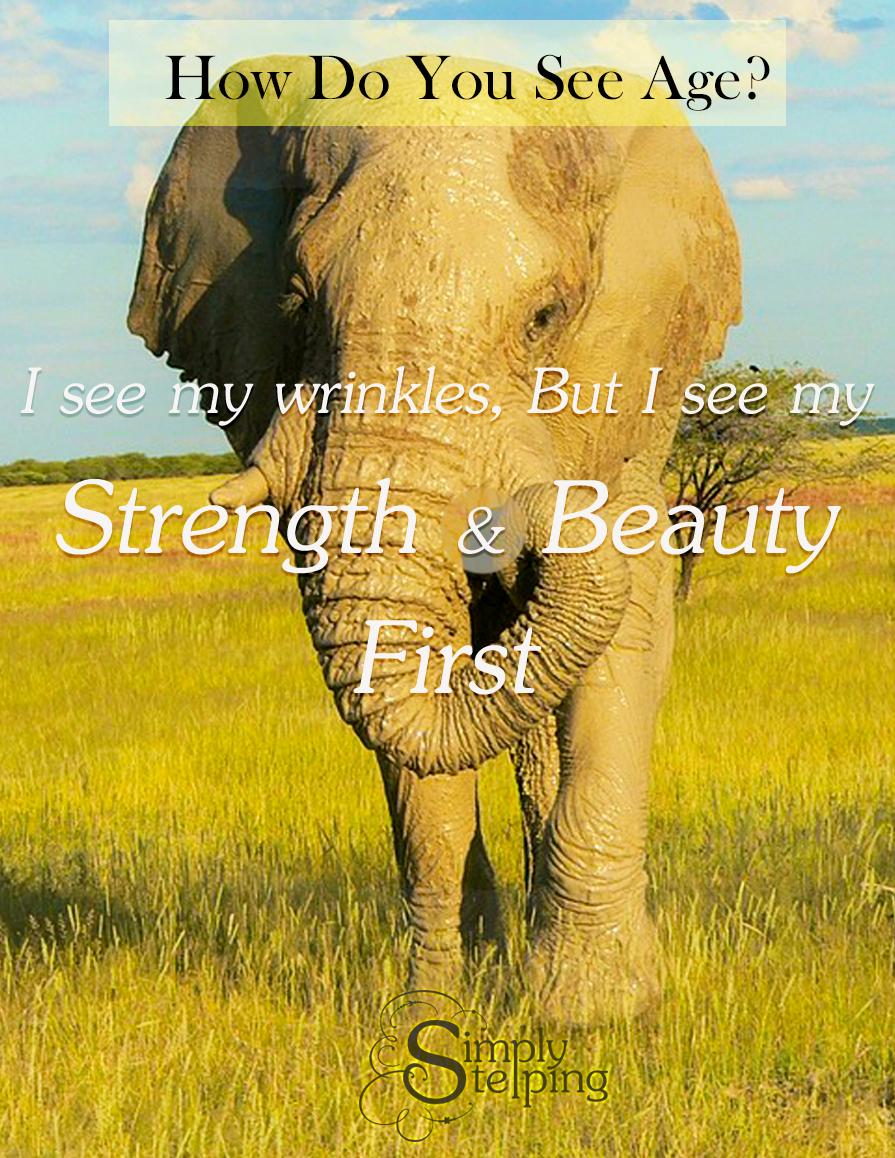 perspective-elephant
